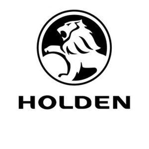 Holden Fuel Injector Pumps