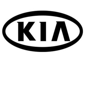 KIA Diesel Fuel Pumps